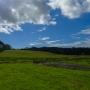 Good morning blue skies (Splendour in the Grass 2013)