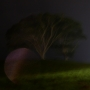 Rain ends Splendour 2013, just as it had started it. (Splendour in the Grass 2013)