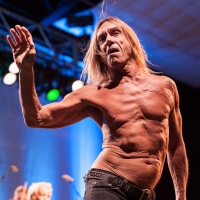 Iggy & The Stooges @ Festival Hall (Melbourne, 27th March 2013)